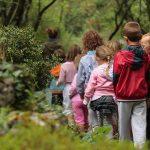 Bambini romani alla scoperta dei boschi