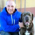 Alfredo Gentile morto sul lavoro: lutto a Fondi