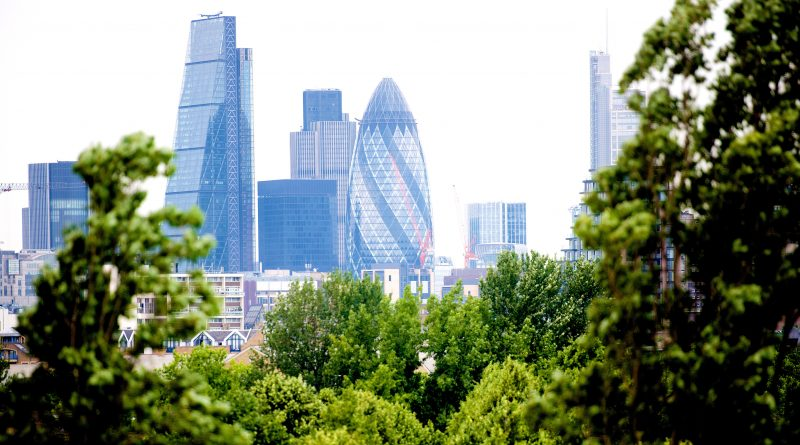 The London Skyline is visible through the trees from Stave Hill
