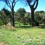 Il Parco Colli d'Oro a Labaro torna ai romani