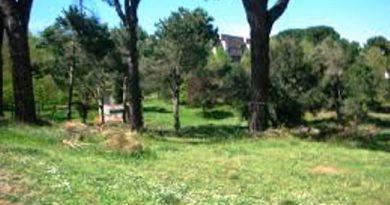 Il Parco Colli d'Oro a Labaro