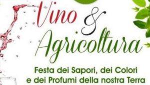 Vino e Agricoltura