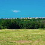 Piano Strategico Agroalimentare: in corso la stesura