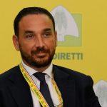 Sos di Coldiretti Lazio per la vendemmia verde selettiva