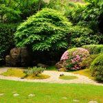 Il kit da giardinaggio: ecco cosa occorre per curare al meglio il proprio giardino