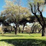 Nasce patto con volontari di Retake Roma per cura del verde pubblico
