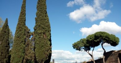 Roma giardini viale carlo felice