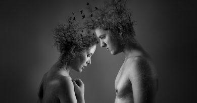 anime gemelle - Foto di Deflyne Coppens da Pixabay
