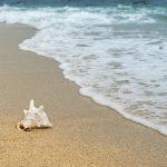 Vacanze in Calabria: Belvedere Marittimo mare e non solo